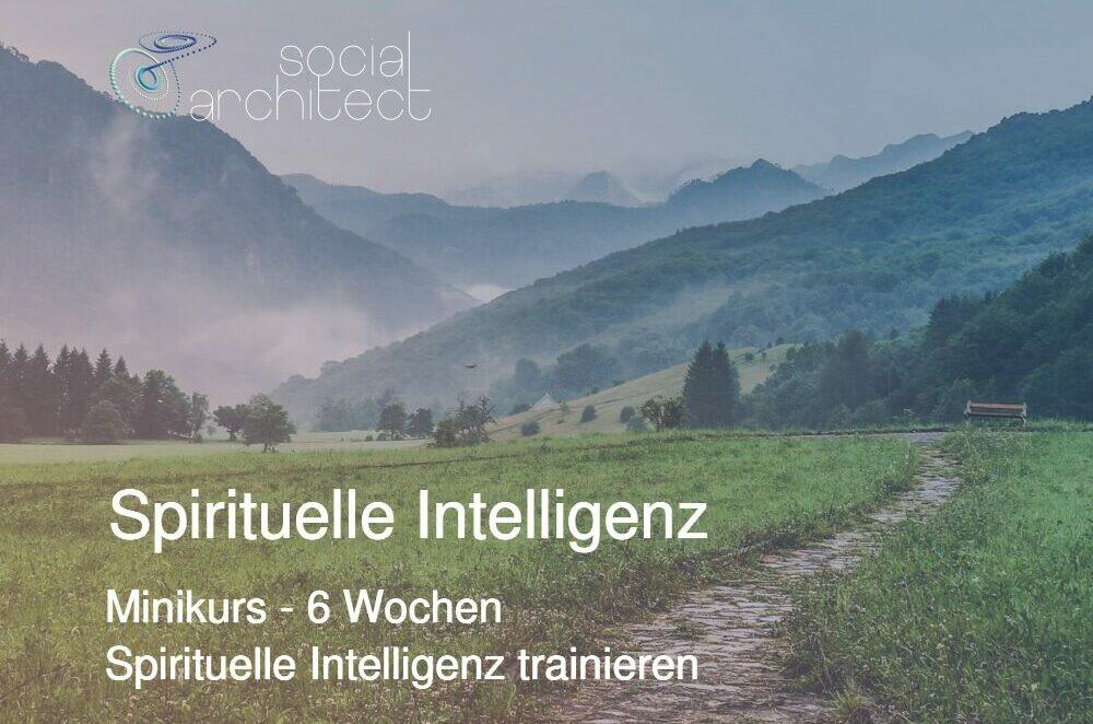 spirituelle intelligenz 21 sq assessment